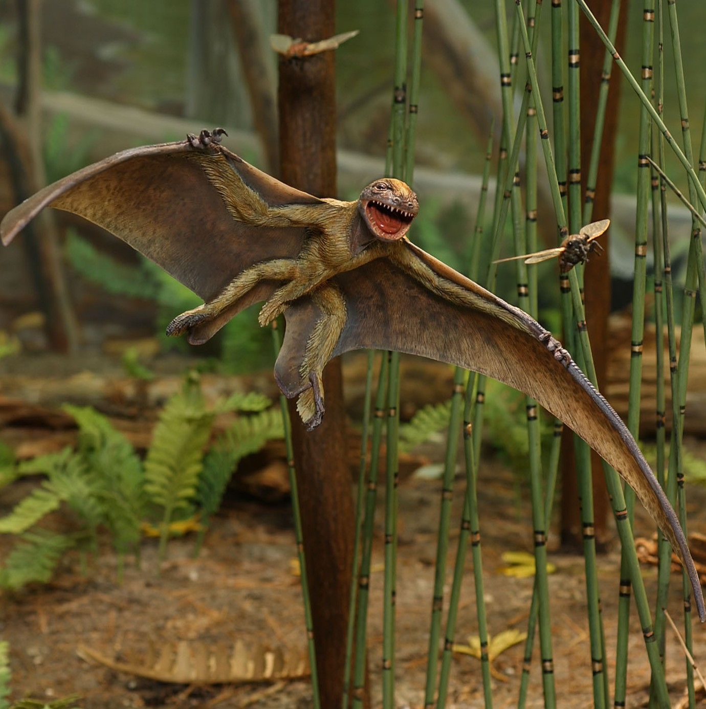 Jeholopterus diorama